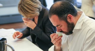 Judging the World's Olive Oils