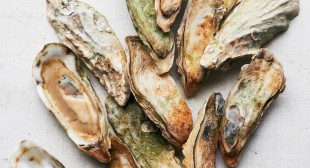 Why The Southeast Could Become The Napa Valley Of Oysters