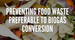 Preventing Food Waste is Preferable to Biogas Conversion, Study Says